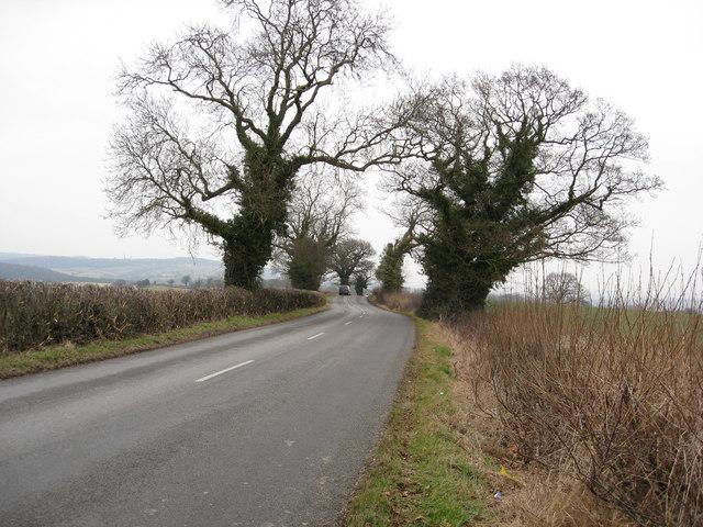 Dunston Road View