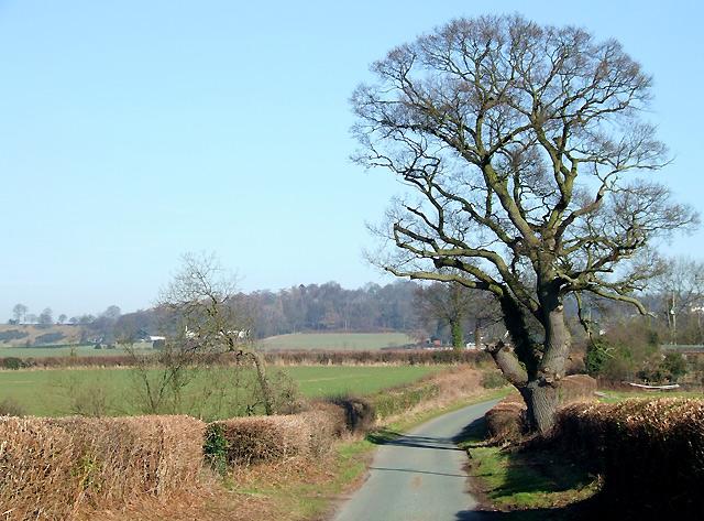 Shropshire Farmland towards Long Common