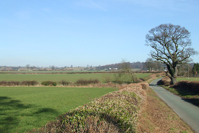 Shropshire Farmland and Lane to Long Common