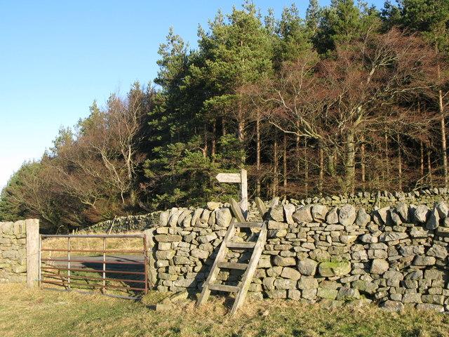 Footpath to Stone Stile