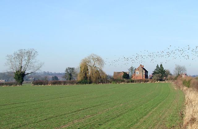 Arable Land towards Upper Aston, Shropshire