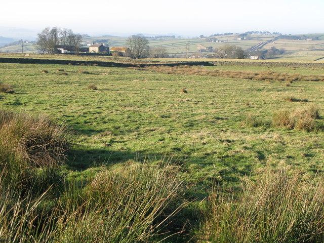 Rough pastures above Stone Stile (2)