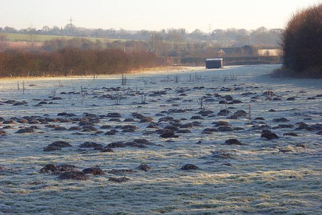 Pasture, Vernham Dean