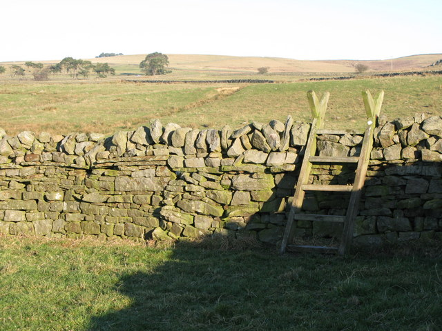 Wooden stile near Stone Stile