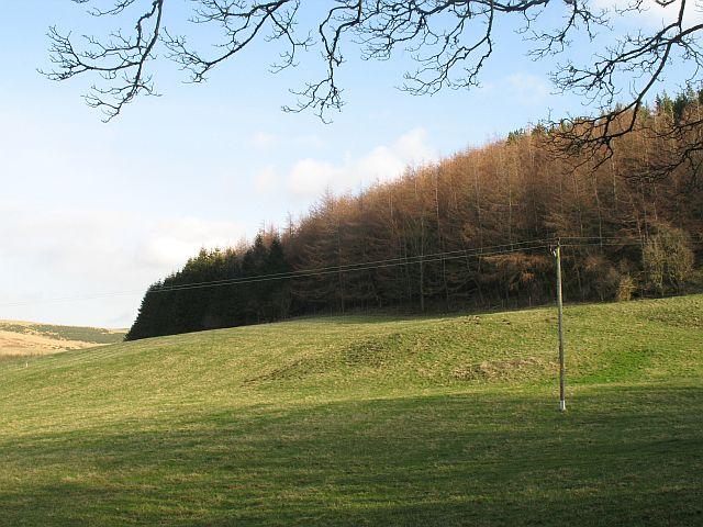 Ardargie Hill