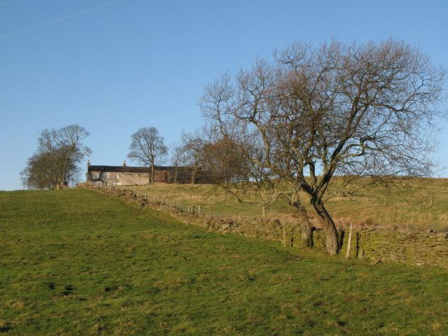 Pastures below Lea Hall (2)