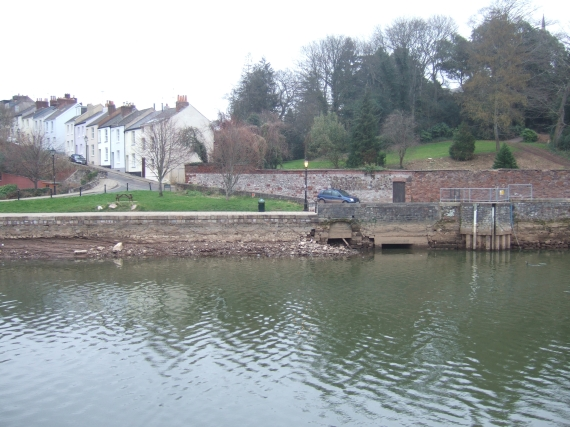 River bank, reduced flow in river Exe by Larkbeare House