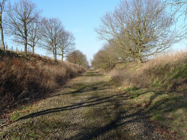 Trackbed, North Elmham
