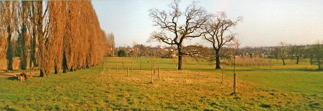 Oakwood Park in Winter, London N14 looking east