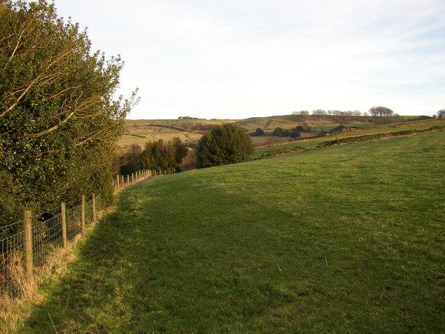 Field edge, Croft House, Scammonden