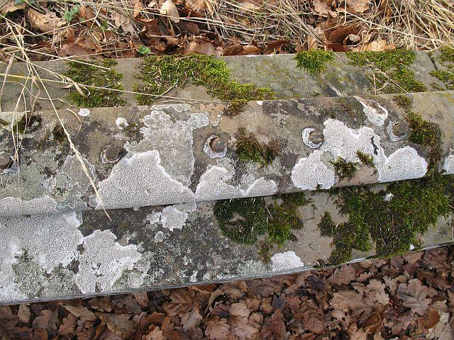 Removed railings, Dupplin Castle