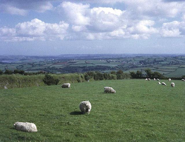 Farmland at Sevenstones