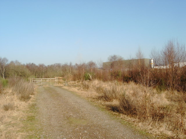 Racks Moss forestry road