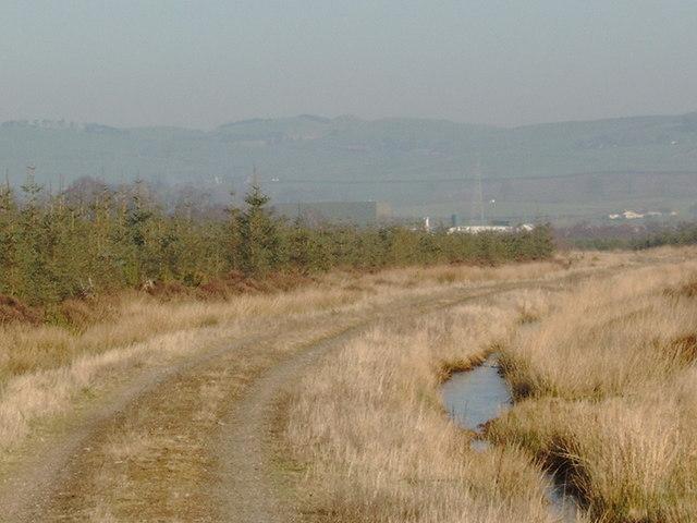 In Racks Moss near Dumfries