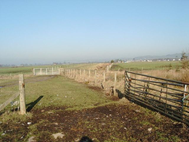 Gates and fences, Racks