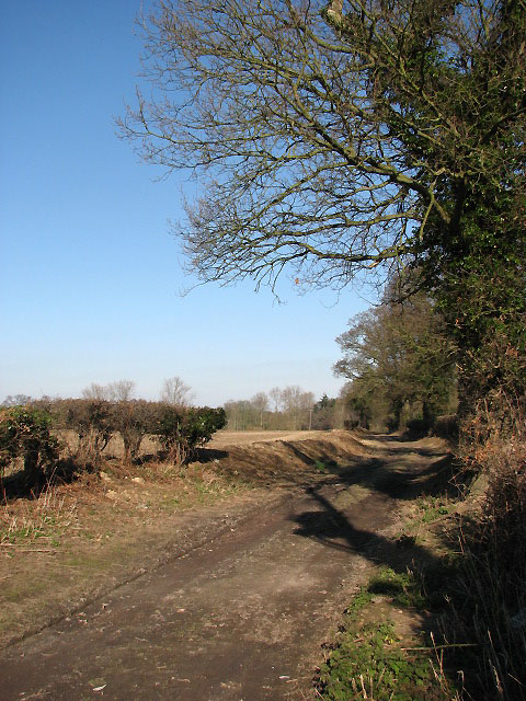 Where Palmers Lane becomes a track