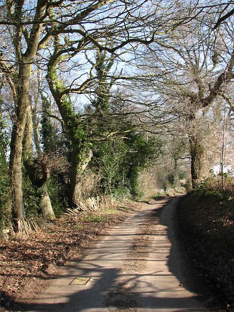 Heading east on Long Lane past Burnt Fen