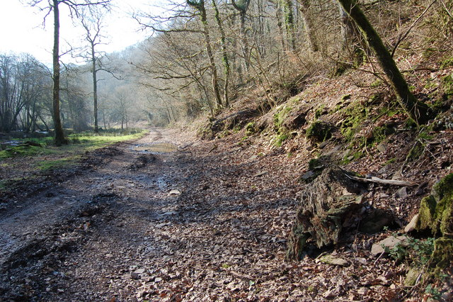 Heading Southwest along Bridleway next to River Haddeo