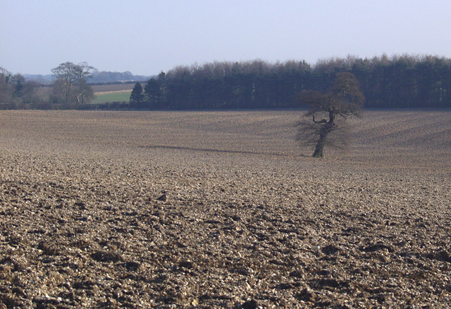 Near Wauldby Manor Farm