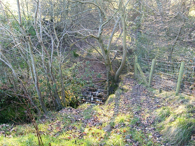 Beck near Sebergham Castle Farm