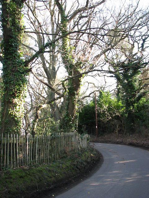 Sharp bend in Long Lane