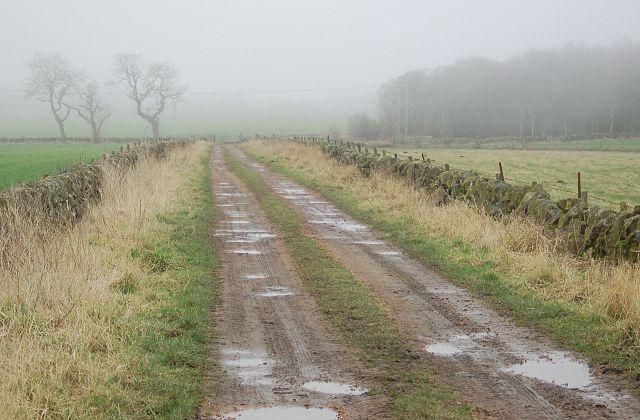 Cameron road