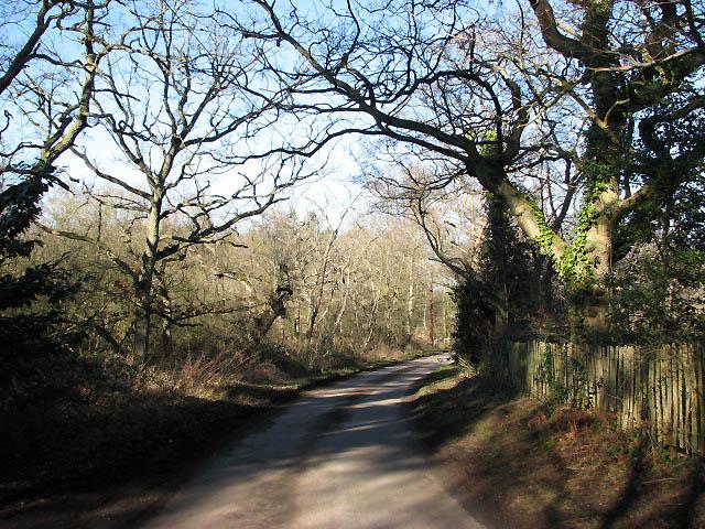Long Lane past Burntfen Broad