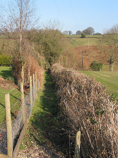 Footpath near Shapridge