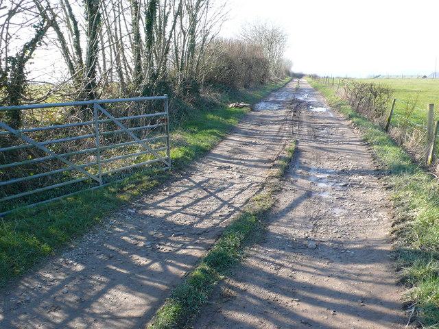 Farm track to Brookway farm near Chalmington