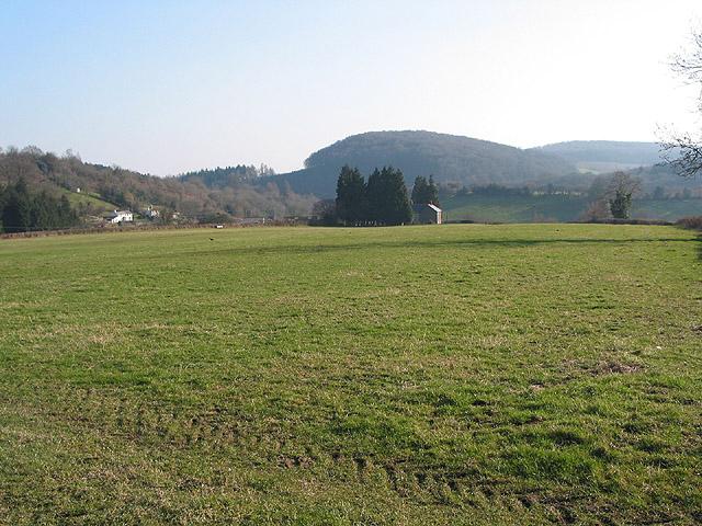 Pasture north of Shapridge