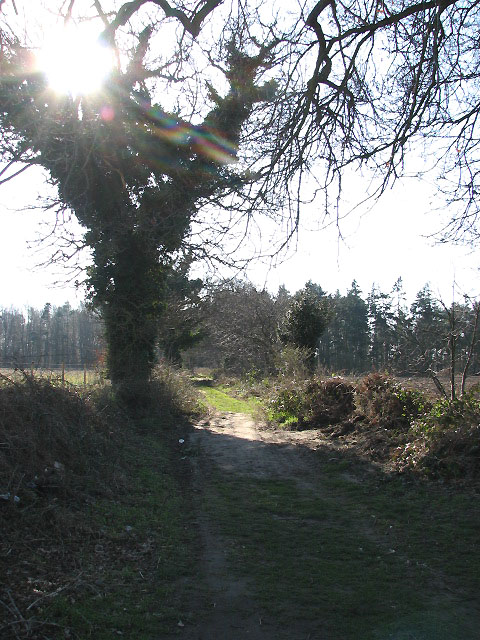 Cycle route and footpath