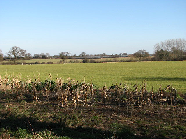 Farmland northeast of Long Lane