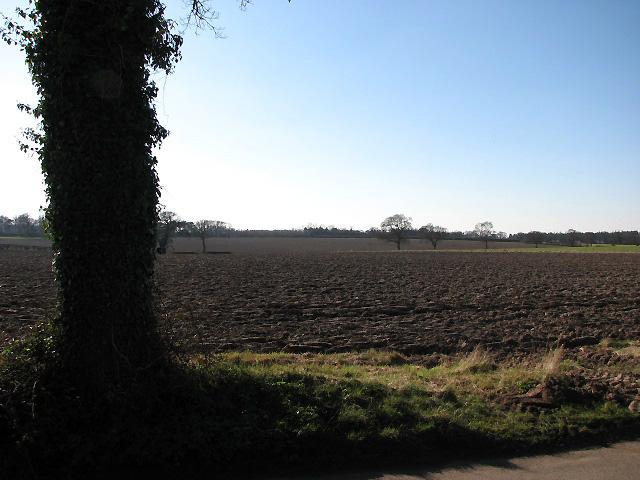 Fields west of Long Lane