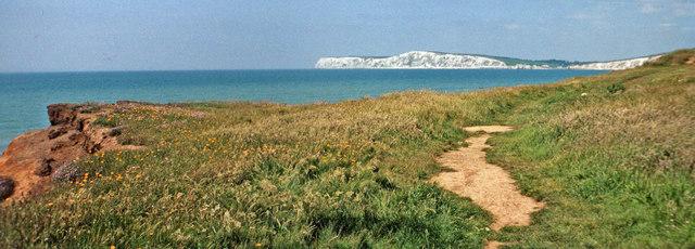 Clifftop near Shippard's Chine, Isle of Wight