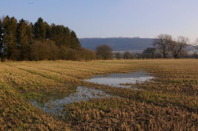 Flooded stubble on Leinthall Moor