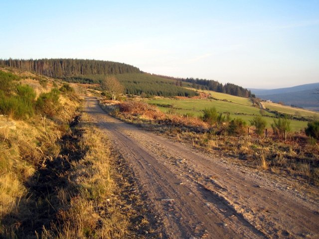 Track above Tillylair