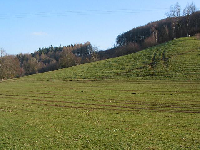 Slopes of Welshbury Hill