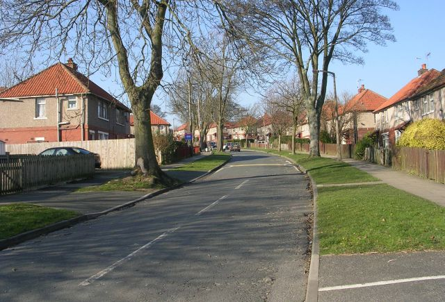 Oaks Avenue - Thornton Road