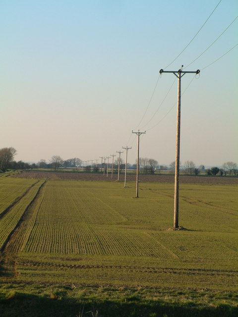 Electricity Poles Across The Fields