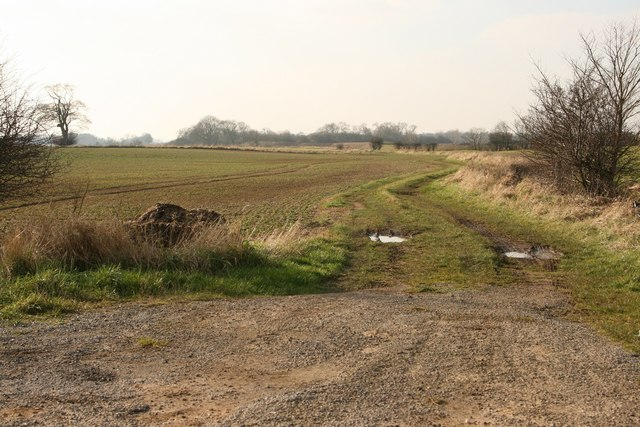 Track towards Bowlams Fox Covert