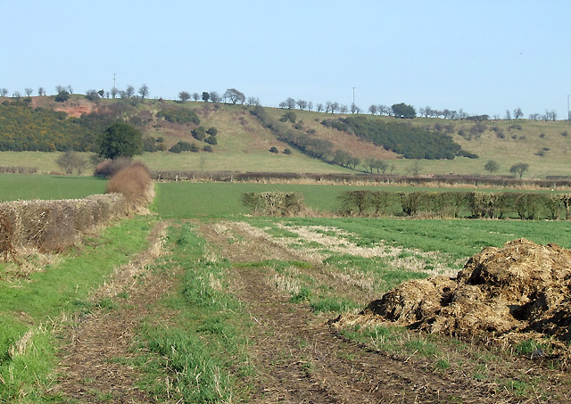 Farmland and Hillside, Upper Aston, Shropshire