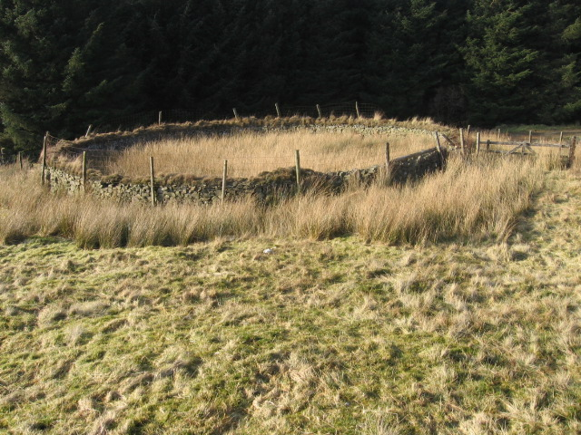Sheepfold near Cogshead