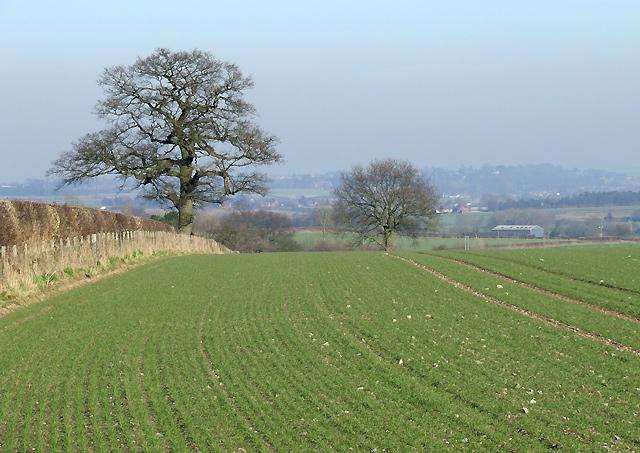 Arable Land towards Seisdon, Staffordshire