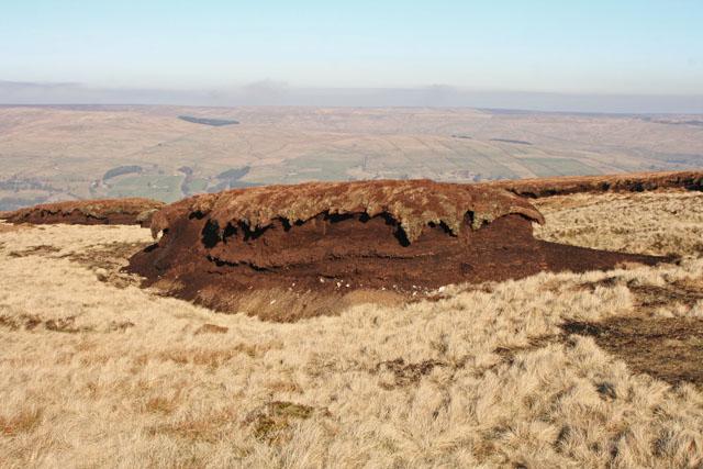 Eroding peat