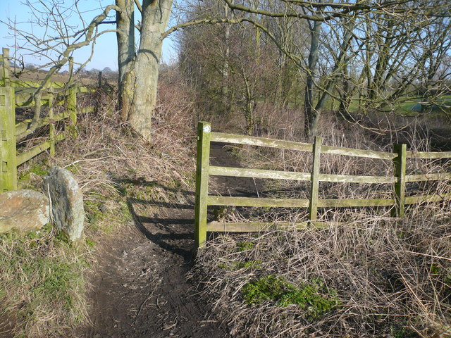 Footpath leading towards Green