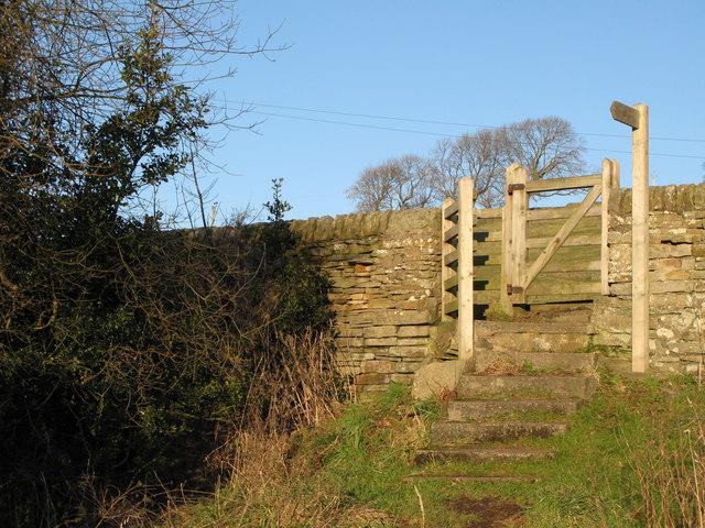 Footpath to Allenmills Bridge