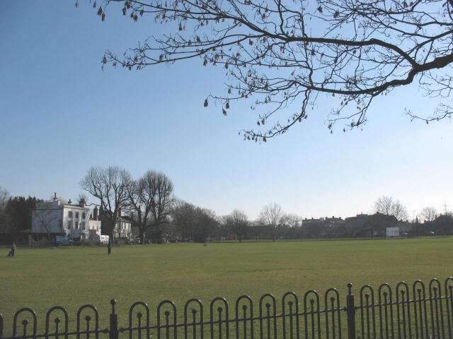Cricket Green in winter