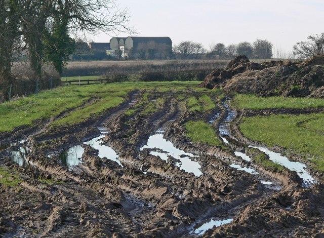 Muddy fields alongside the B4116 Twycross Road