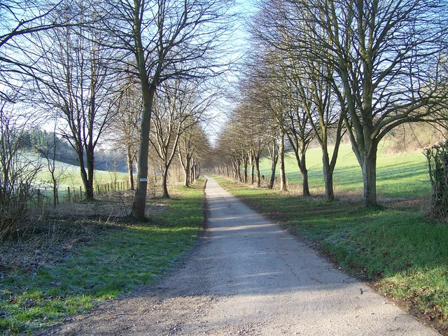 Footpath to Little Durnford