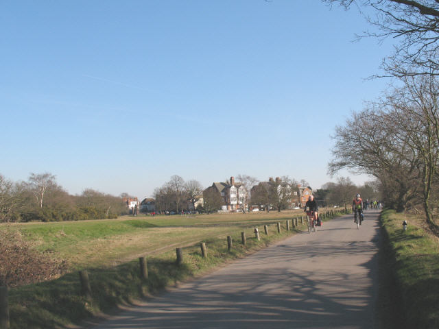 Sunset Road, Wimbledon Common